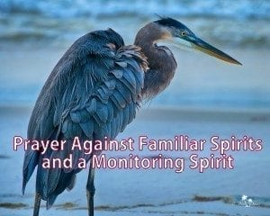 familiar spirits monitoring spirit