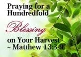Hundredfold Blessing Prayer Matthew 13:3-9