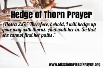 hedge of thorns prayer