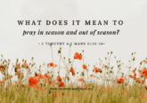 pray-in-season-and-out-of-season
