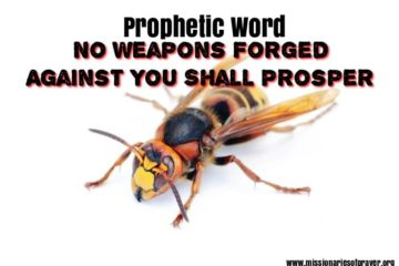 prophetic word no weapons forged against you shall prosper