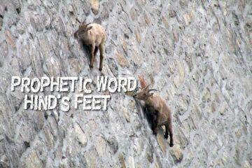 prophetic word hinds feet